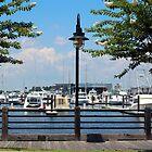 Riverfront Scene by Cynthia48