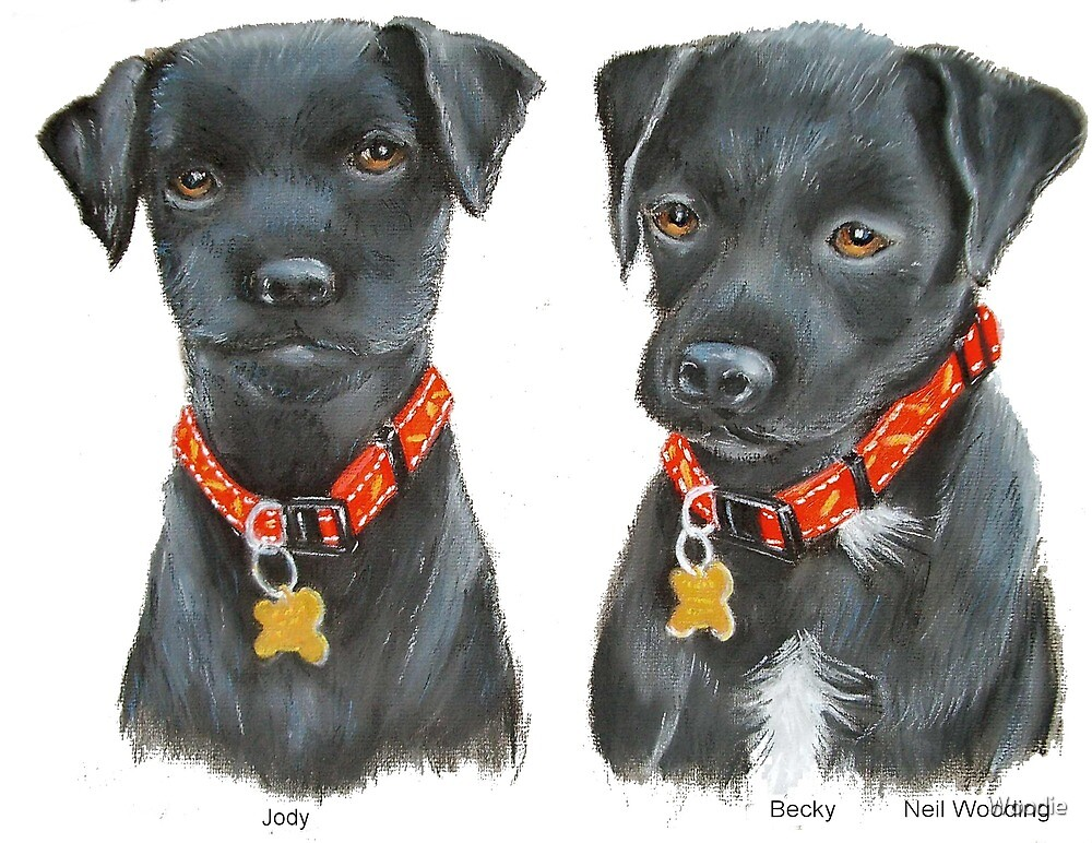 JODY & BECKY, terrier pups  by Woodie