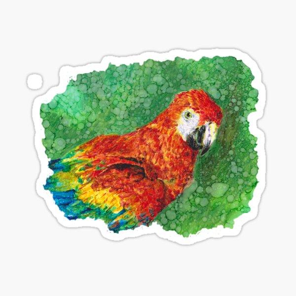 Bright Parrot  Sticker