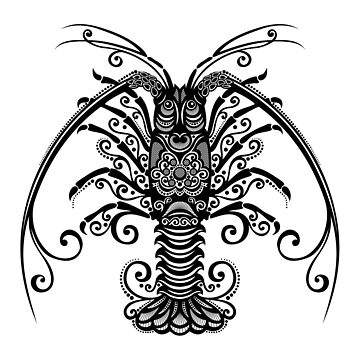 Black and White Print of Exotic Spiny Lobster by lissantee