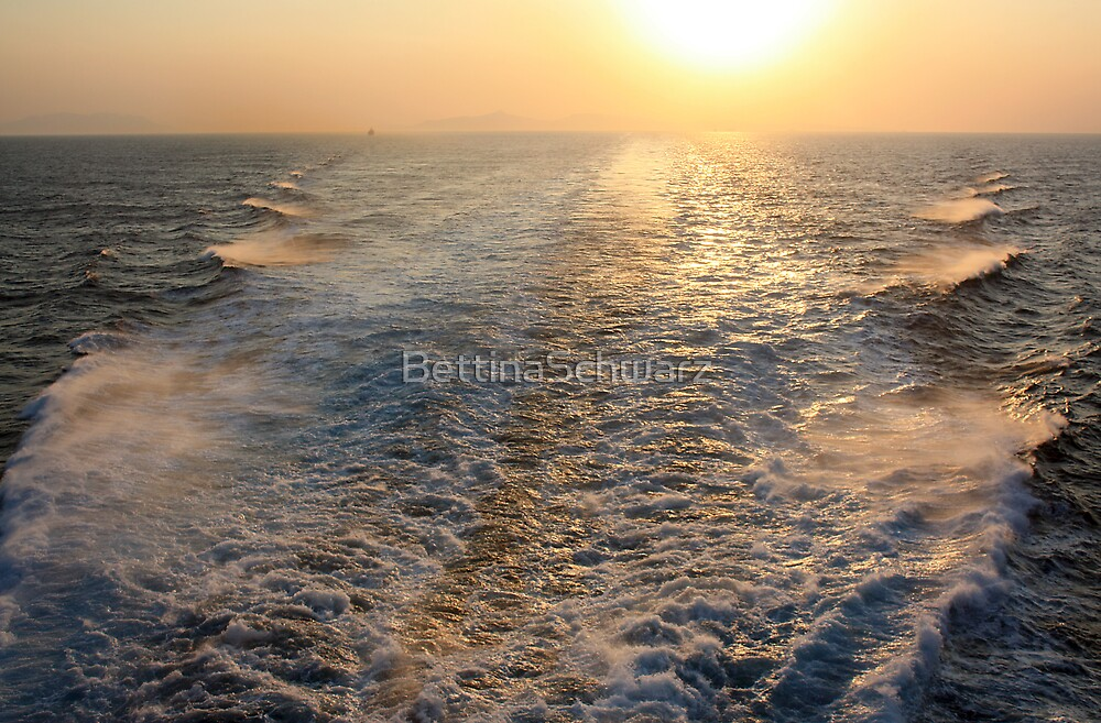 """Sailing into (or is it """"out of"""" in this case?) the Sunset by BettinaSchwarz"""