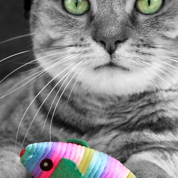Green Eyed Tabby Cat with Catnip Mouse by simpsonvisuals