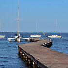Zig Zag Wooden Pier  by Cynthia48
