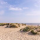 Sand dunes and blue skies by Zoe Power