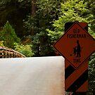 Fisherman Crossing Sign by BellaStarr