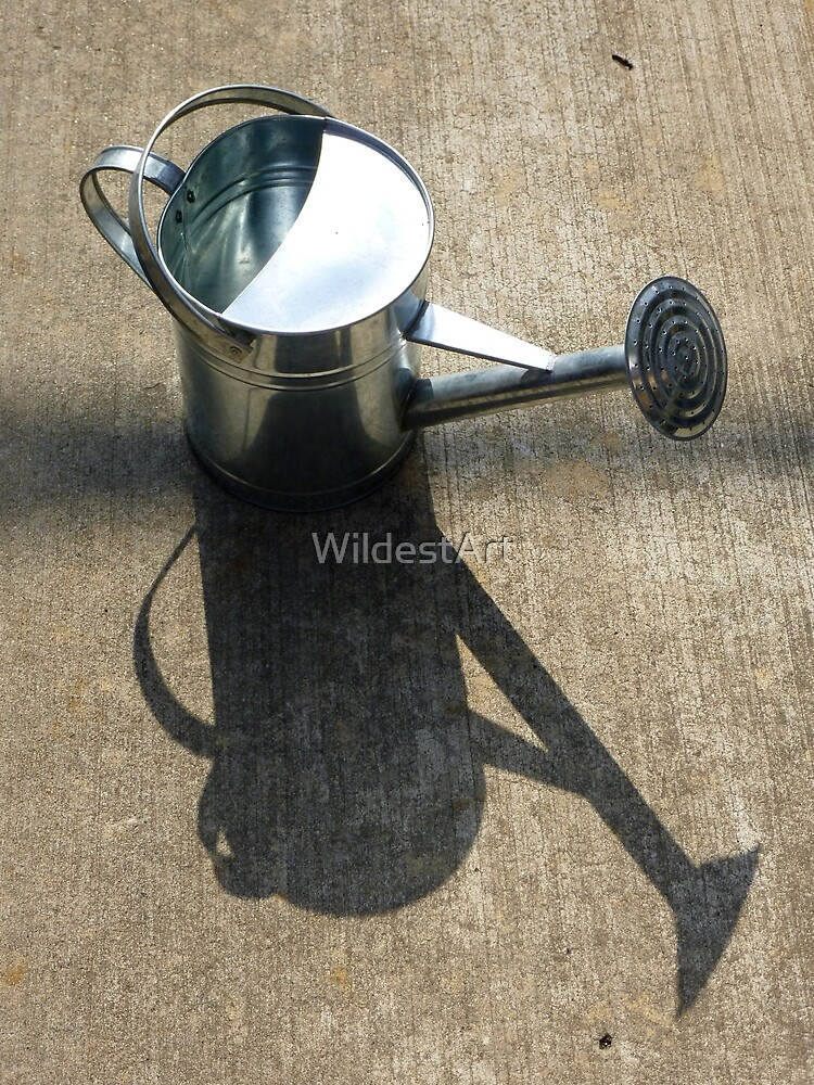 My New Can by WildestArt