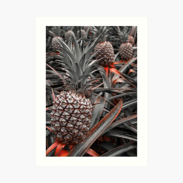 Sweet Pineapples Art Print