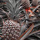 Sweet Pineapples by aaronarroy