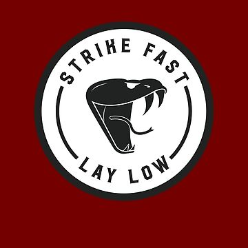STRIKE FAST // LAY LOW by mark-omlor