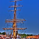 Barque Picton Castle by LudaNayvelt