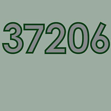 37206 gray by antarctican
