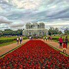 Botanical Garden of Curitiba - South of Brazil  by KesiaHosking