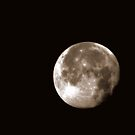 A Morning Moon.......... by Larry Llewellyn