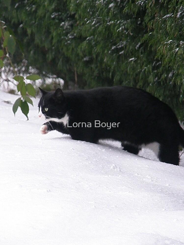 Winter Gem by Lorna Boyer