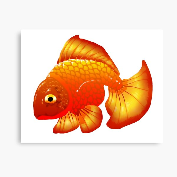 Simple Gold Fish Canvas Print