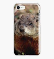 Groundhog II iPhone Case/Skin