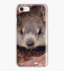 Groundhog III iPhone Case/Skin