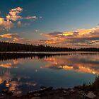 Magic Reflection by Alla Gill