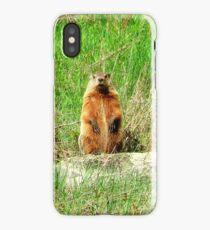 Groundhog iPhone Case