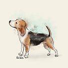 Watercolor Drawing of a Cute Beagle by ibadishi