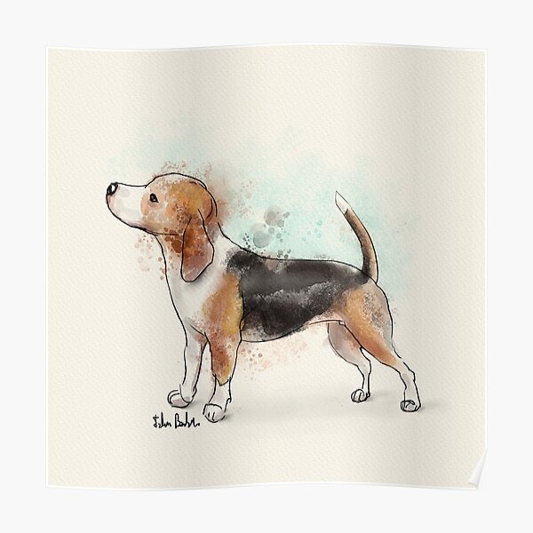Watercolor Drawing of a Cute Beagle Poster