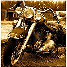 My friend the wind - Harley Davidson. by Andrzej Goszcz. by © Andrzej Goszcz,M.D. Ph.D
