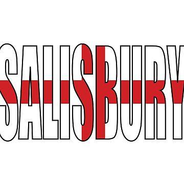 Salisbury England by Obercostyle