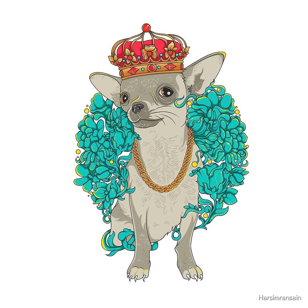 cool chihuahua dog  by Harsimransain