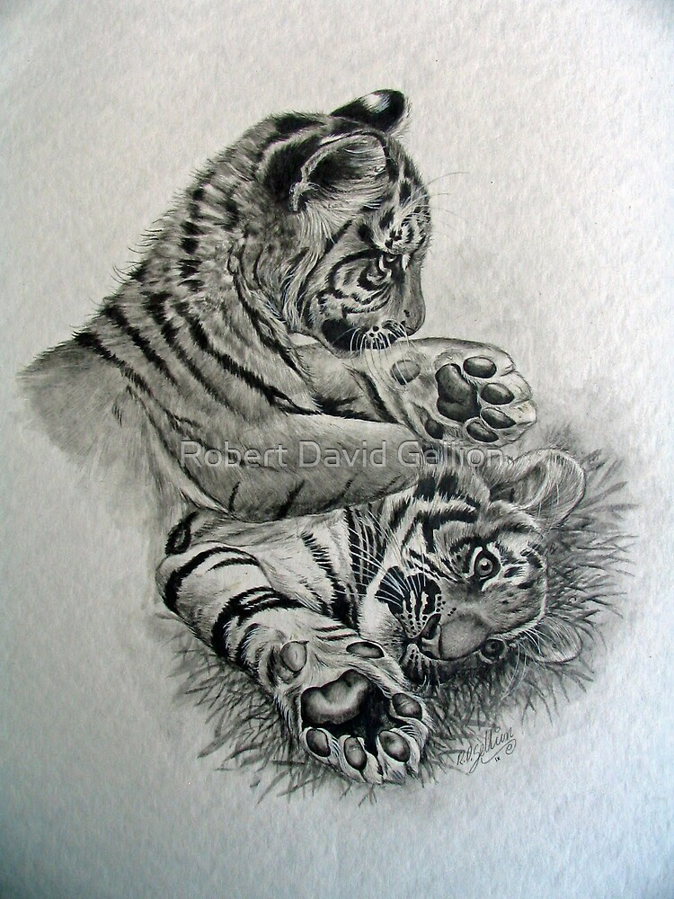 Cubs by Robert David Gellion