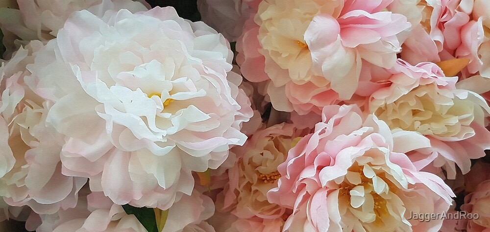 Pink & White Camelias on Canvas by JaggerAndRoo