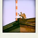 At the Museum Island...  by polaroids
