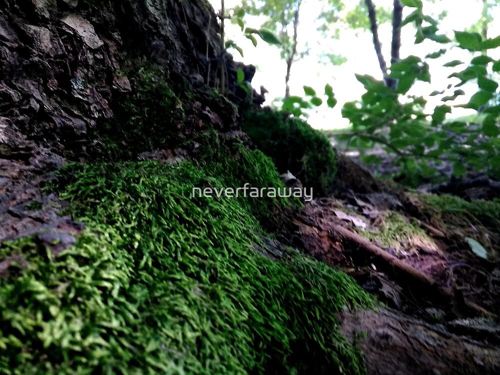 Summer Moss Green by neverfaraway