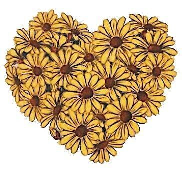 sunflower heart by stickersnstuff