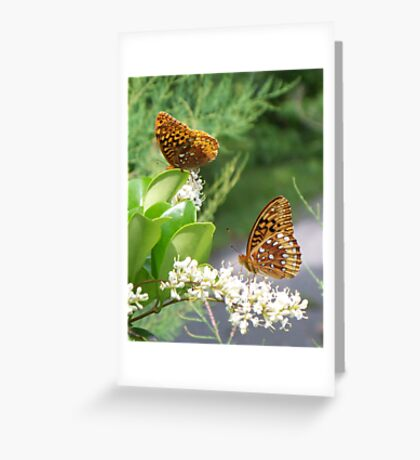 Two-by-Two Greeting Card