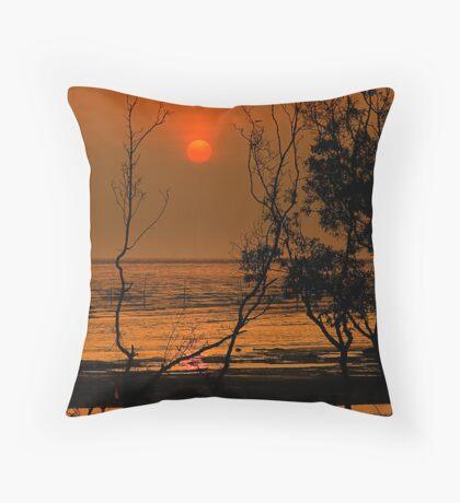 # 20090422 # Throw Pillow