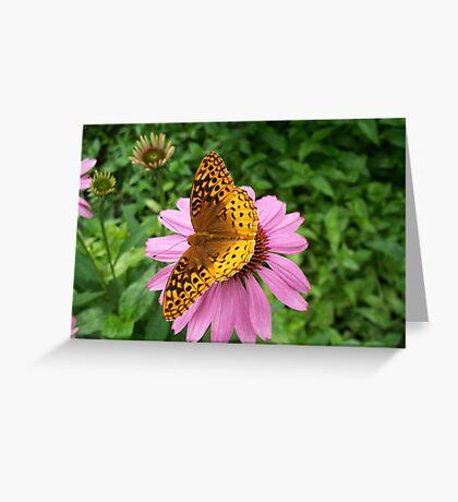 Still Beauty Greeting Card