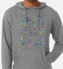 Colors of the Cosmos - Type ν Lightweight Hoodie