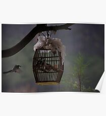 Mother feeding her captive babies Poster