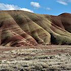 Folded Hills - Painted Hills National Monument, Wheeler County, OR by Rebel Kreklow