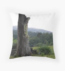 Once apon a time Throw Pillow