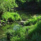 Winding River by rhamm