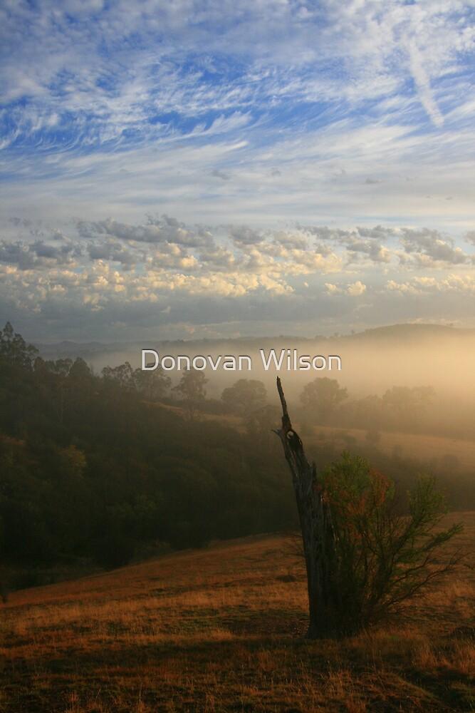 Dreamscape by Donovan Wilson