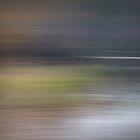 Quiet Waters (2) by Ben Loveday