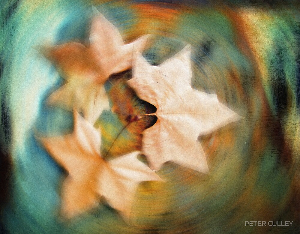Autumn spin by PETER CULLEY