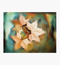 Autumn spin Photographic Print