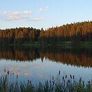 Loch Laven by Ellinor Advincula