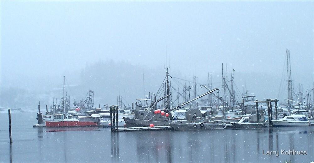 Boats In Winter 1 by Larry Kohlruss