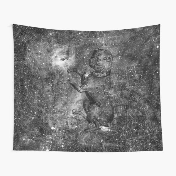 When The Stars Are Right - The Seagull Nebula In Canis Major (b&w version) Tapestry
