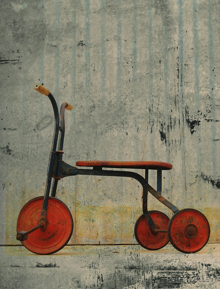 Little Red Trike by PETER CULLEY