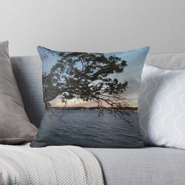 #pattern, #design, #tracery, #weave, #decoration, #motif, #marking, #ornament, #ornamentation #FramedPrints #ToteBags #Framed #Prints #Tote #Bags #ThrowPillows #Throw #Pillows  Throw Pillow